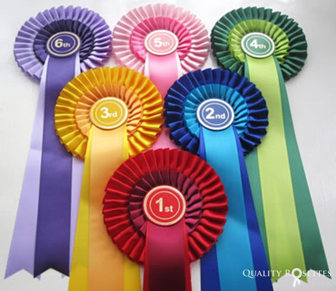 Quality Rosette from the Aztec Range