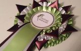 Quality Rosette from the Benn Range